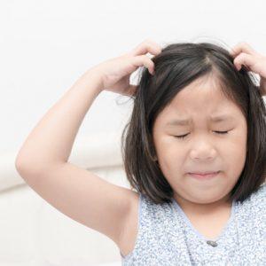 5 Cara Menghilangkan Kutu Rambut Super Mudah Dan Bikin Happy!