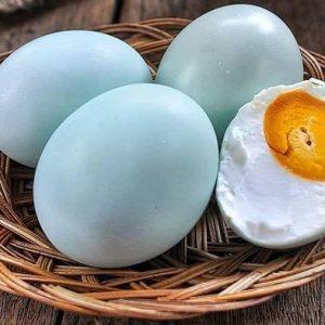 5 Manfaat Telur Bebek Yang Wajib Kamu Tahu, Super Istimewa!